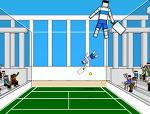 래그돌 테니스, Ragdoll Tennis