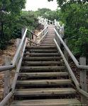 scene#6 정상으로 가는 계단