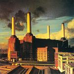 [특선 247] Pink Floyd - Animals