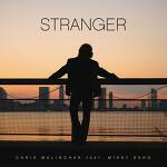 Chris Malinchak - Stranger (feat. Mikky Ekko)