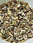 [Herbalism] 아스피린을 먹을까, 버드나무 차를 마실까