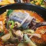 삼성역 맛집 권가네 순대국, 신 해주가 점심