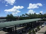 하와이마우이첫날! 지프랭글러 렌트/달라렌트카