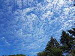 천마산 입구에서 바라본 하늘