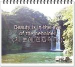 영어속담과 삶의 이야기34-Beauty is in the eye of the beholder(제 눈에 안경이다)