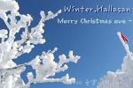 [제주 겨울여행] 한라산의 설경, 어리목 코스로 윗세오름까지 한라산 쉬운코스 등반하기_메리 크리스마스 제주도!_겨울 한라산 준비물