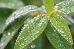 심한여드름 증상이 발생하는 이유와 환절기 여드름피부 관리법