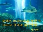 서울 아이와 함께 갈만한 곳, 코엑스 아쿠아리움 할인과 가격 알아보기