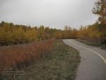캐나다의 짤막한 가을과 영양 덩어리 가을 채소 말리기