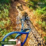 아프리카 잠비아 : 아프리카 동물 사자 & 치타와 함께 아침 산책하기 ♥뭉쳐야 뜬다 아프리카