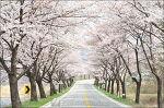 김소연 - 봄봄봄 봄이 왔어요~♩