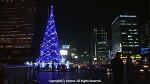 12월 25일 크리스마스가 예수님의 탄생일이라구요?