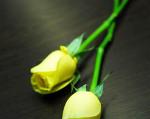 생리통 완화법과 족욕을 통한 예방법