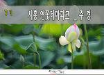 시흥 연꽃 테마파크