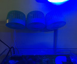 OA 오아쿨링 어항용 무소음 냉각팬 설치기