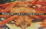 [와9와9 솔직후기] 수협 강서 수산시장 킹크랩 오징어