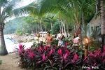 트로피컬 숲에서 펼쳐진 '리듬 오브 더 나잇' - 멕시코 여행 9