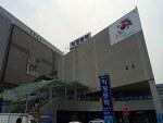 마마무(MAMAMOO) - 게릴라콘서트 후기(올림픽 공원)