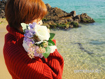 동해 감성 바다 어달해변 - 변덕스러운 나의 작은 바다, 그래도 사랑해