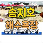 송지호 해수욕장 텐트 무료지역 이용 후기 및 풍경
