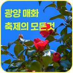 광양 매화축제기간 여행 맛집 먹거리 :: 2019년 정보