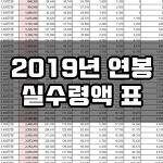 2019년 연봉 실수령액 미리 확인해보세요! +월급 실수령액도 추가!