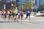 2018 JTBC 서울마라톤, 중앙마라톤