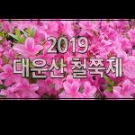 2019년 대운산 철쭉제 (2019-4-21(일))