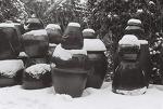 Kentmere 흑백필름, 지난 겨울의 단양과 군산.
