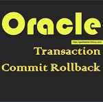 [Oracle] Transaction이란?