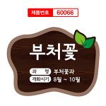 부처꽃 수목표찰 60066