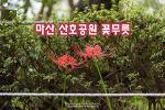 마산 산호공원 꽃무릇. 2019년 가을 반가운 첫 만남