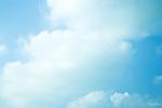하얀 꿈 푸른 하늘