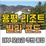 용평리조트 빌라콘도 내부 모습 및 주변 풍경 (G동 2536호 투숙)