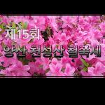 2019 제15회 양산 천성산 철쭉제 (2019-4-28(일))