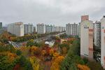 비오는 가을 풍경
