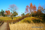 동해 가원습지 생태자연공원, 햇살 맑은 공원에서 봄볕 같은 가을 산책