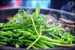 팔공산 미나리 삼겹살-담말리 미나리 농장에서 그리고 봉무공원 단산지 산책