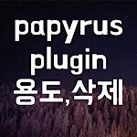 Papyrus Plugin 삭제방법 용도 알아보기