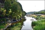 서거정의 북벽향림-천연기념물 1호 도동 측백나무숲