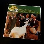 비치 보이스 (The Beach Boys) - PET SOUNDS (1966)