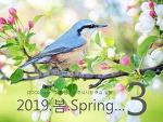 2019년 3월 주식시장 주요일정
