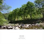 [전북캠핑] 방화동자연휴양림 캠핑 봄!!
