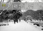 선운사의 겨울이야기