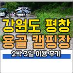 강원도 평창 용골 캠핑장 (용골 송어와 캠핑장) 이용 후기