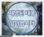 (8호 태풍 프란시스코 북상 & 9호 태풍 레끼마 발생) 제명된 태풍들