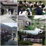 2018 생태징검다리, 하천에서놀자 결과발표회