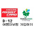 [CHOKO] D-12 여행자보험 가입하기 (어시스트카드, 트래블로버, 삼성화재)/ 세계여행 준비/ 남미 여행자보험