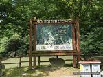 2017년 여름 가족여행 : 전라북도 임실 세심자연휴양림 1박 2일, 물놀이도 하고 닭갈비도 먹고