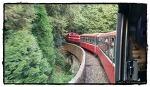 아리산 기차여행 - 자이 여행기 (Alishan, Chiayi)